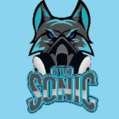 sonic619